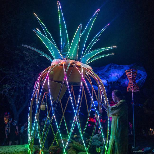 Charles Dusastre - Burning Man, LED Artist